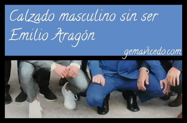 Calzado masculino sin ser Emilio Aragón
